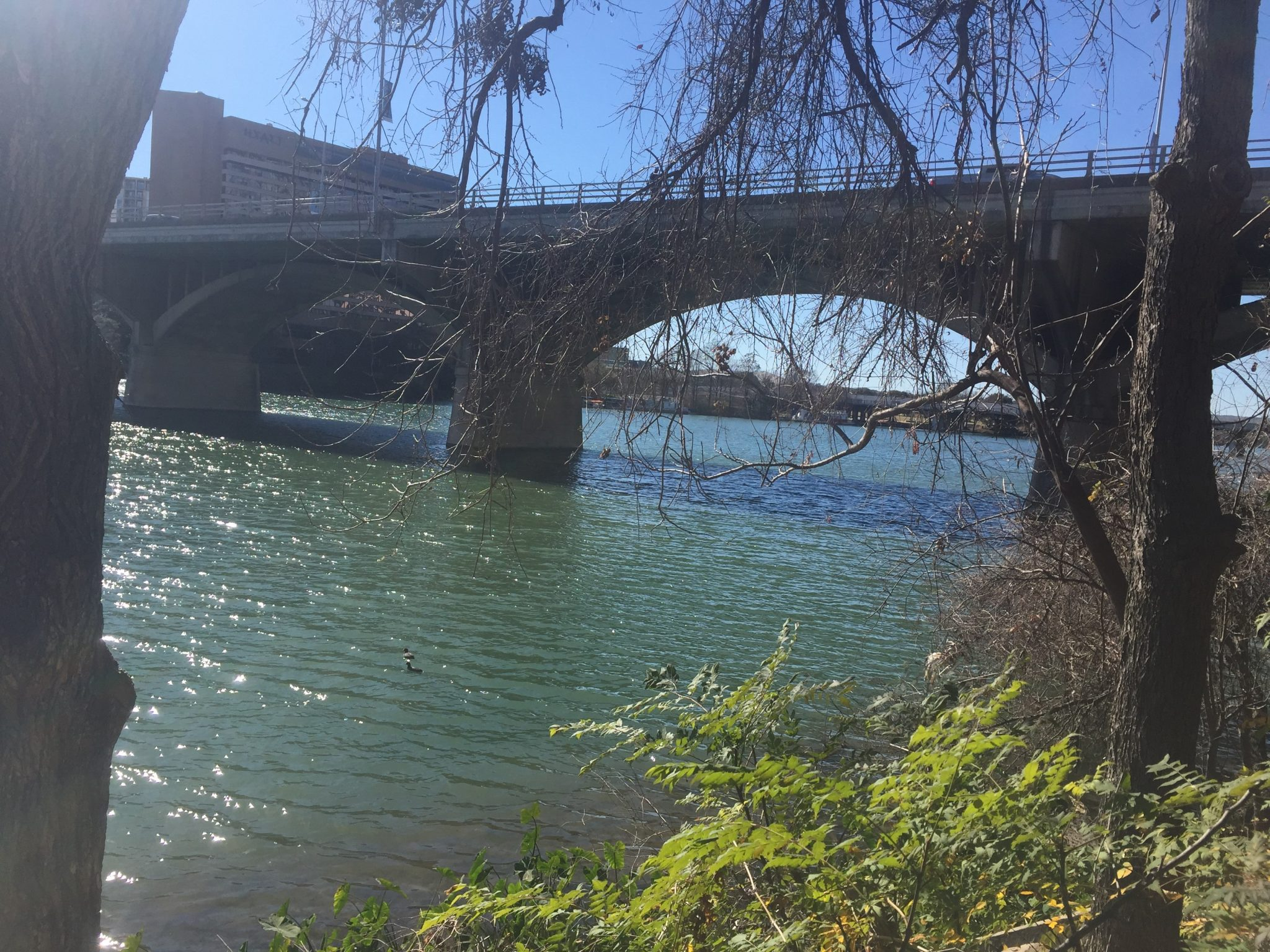 lady bird lake: 2 days in austin