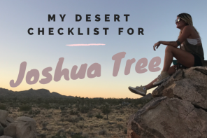 Top Things to Do in Joshua Tree During Your Next Desert Trip