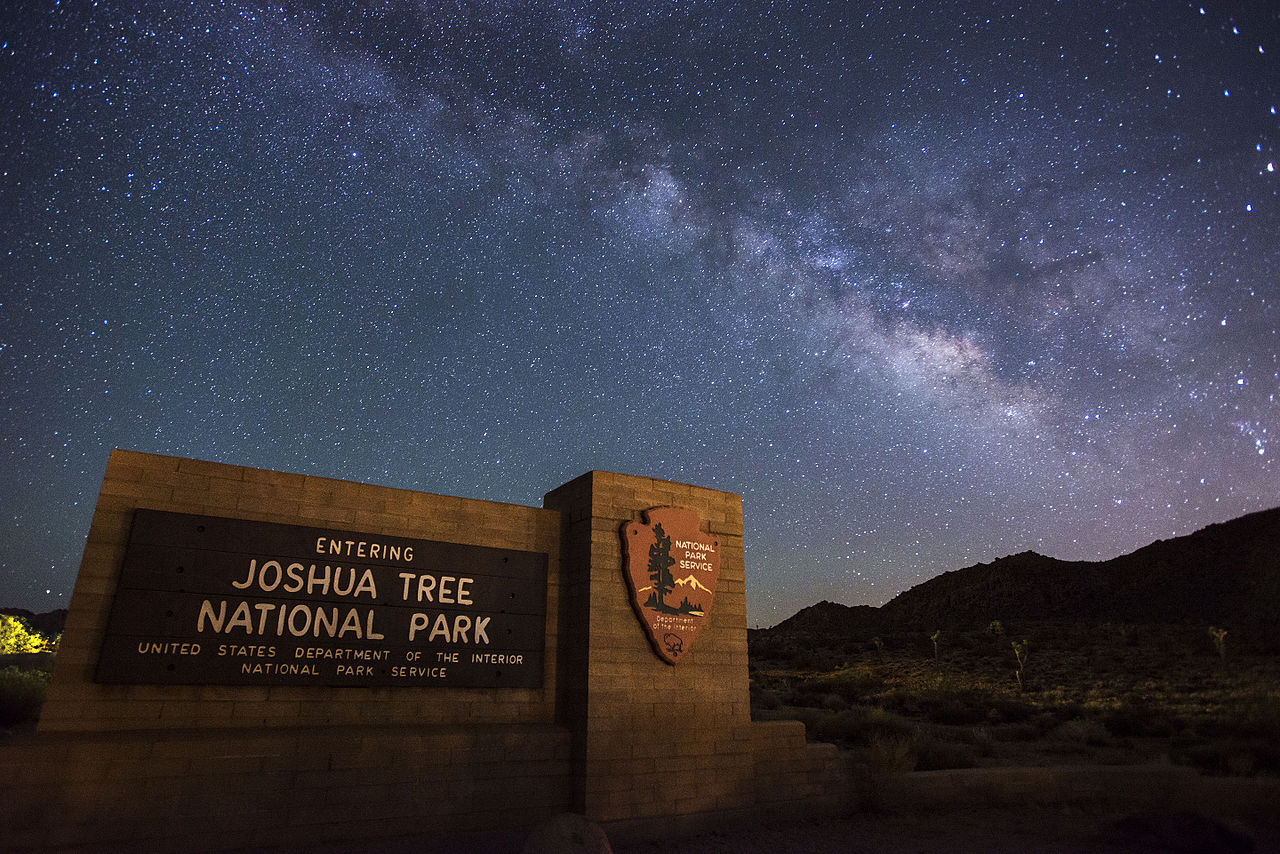 things to do in joshua tree