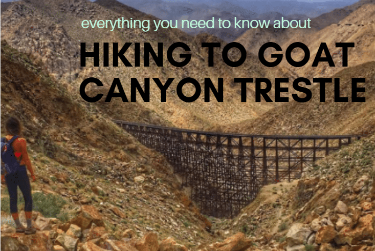 Goat Canyon Trestle Hike: Everything You Need To Know