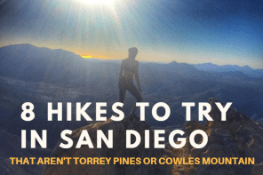 8 San Diego Hikes to Try (That Aren't Cowles or Torrey Pines)